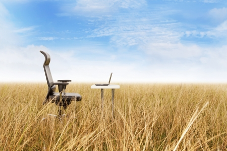 Outdoor office in a golden grass with a clear sky