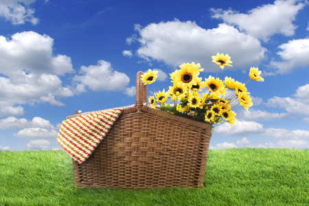 flower baskets: Picnic basket with woven and yellow flower, shot on the green grass Stock Photo