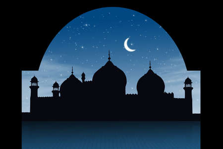 Silhouette of a mosque shot in a starry night  Stock Photo - 14659550