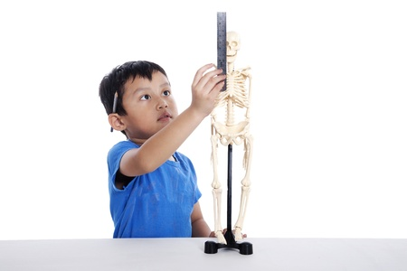 Asian boy measures human skeleton isolated on white background photo