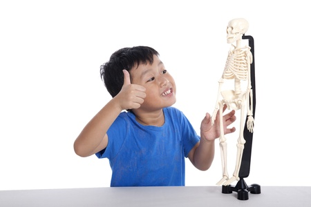 Asian boy studies human anatomy isolated on white photo