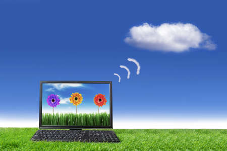 laptop outside: Cloud computing concept with pc computer in meadow