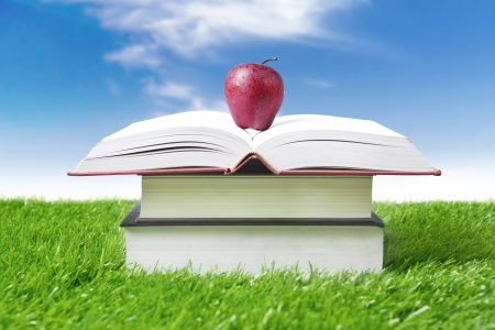 food research: Stack of books and red apple under sunlight on green grass Stock Photo