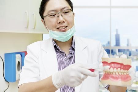 dentadura postiza: Retrato del dentista masculino orientar la forma correcta de cepillarse los dientes Foto de archivo