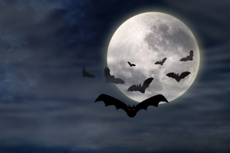 spooky eyes: Creepy halloween background with bats flying in the moonlight