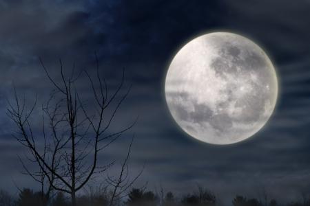 luz de luna: Halloween de fondo con la oscura noche de niebla y luna llena