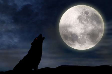 silhouette illustration of wild wolf howling against the sky with full moon rising behind illustration