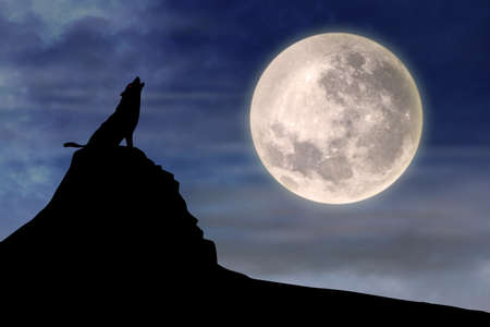 moon surface: silhouette illustration of wild wolf howling against the sky with full moon rising behind