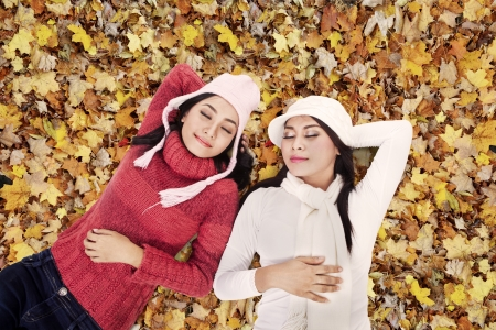 Two friends are sleeping on Autumn leaves in the park Stock Photo - 16251227