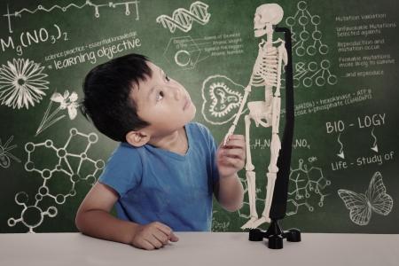 Asian boy studies human anatomy isolated on white Stock Photo