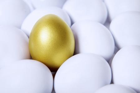 Standing golden egg in between white eggs Stock Photo - 17573361