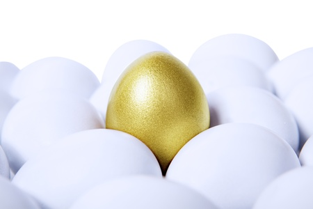 Standing golden egg in between white eggs isolated photo