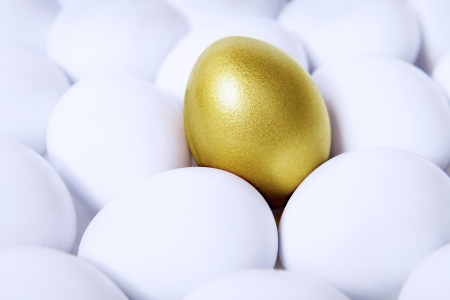 Standing out golden egg in the midst of common white eggs photo
