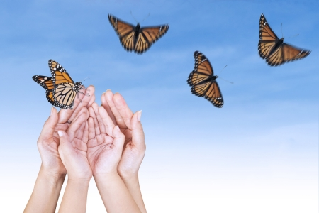 butterfly hand: Beautiful butterflies with open hands under blue sky