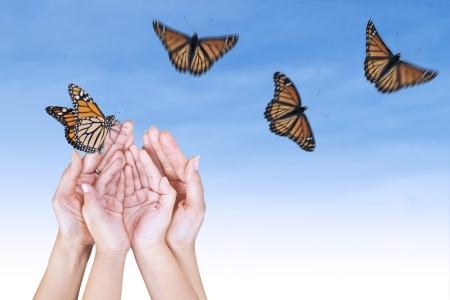 manos abiertas: Mariposas hermosas con las manos abiertas bajo el cielo azul