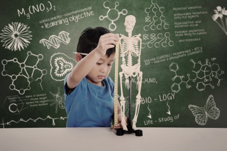 Asian boy learns biology isolated on white photo