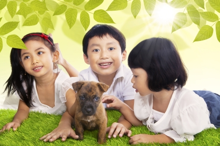 happy asian family: Three little children are playing with their dog in the park during spring Stock Photo