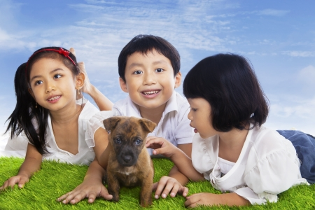 Three little children playing with small puppy dog on the field photo