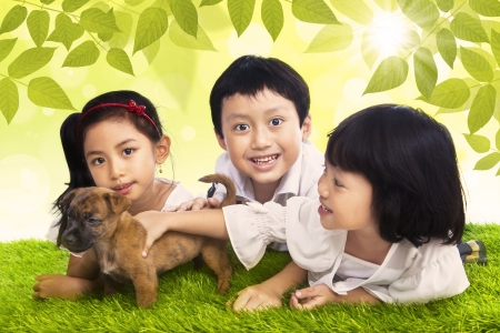 Three little children play with their dog in the park photo