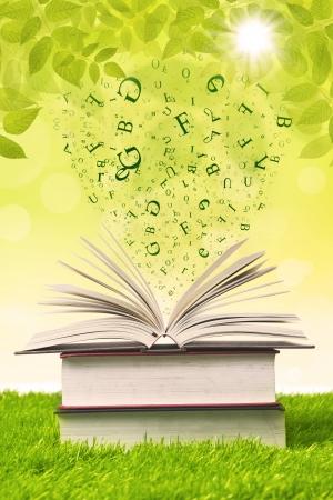 libros volando: Pila de libros con cartas de vuelo en la hierba verde