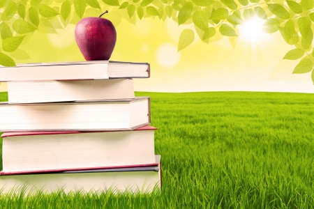 summer school: Apple sitting on top of books in the park