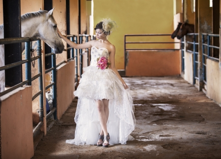asian bride: Beautiful bride touching a horse at the ranch Stock Photo