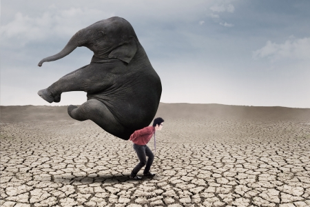 Businessman carry elephant by himself on dry ground as leadership concept photo