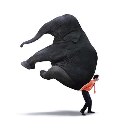 Images of businessman lifting heavy elephant - isolated on white background photo