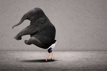 Portrait of businesswoman lifting heavy elephant over grey background photo