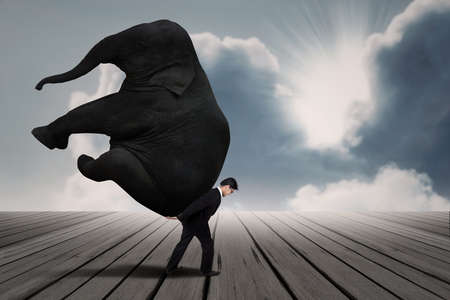 bring: Businessman carry elephant by himself under blue sky as leadership concept
