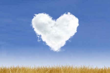 Blue sky and heart shaped cloud over yellow grass photo