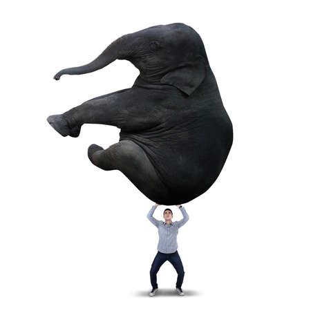lifting: El hombre asi�tico est� levantando gran elefante aisladas sobre fondo blanco
