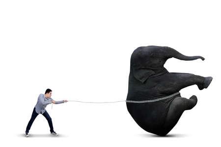 Asian man is pulling big elephant on white background Stock Photo - 22616381