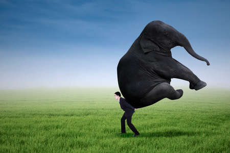 Portrait of businessman carrying heavy elephant outdoor photo
