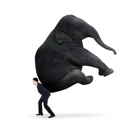 weitermachen: Portrait der Gesch�ftsmann mit schweren Elefanten - isoliert auf wei�