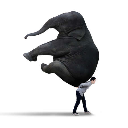 heavy: Young businessman carrying heavy elephant - isolated on white  Stock Photo