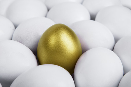 Difference concept: Standing golden egg in between white eggs Stock Photo - 25727243