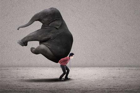 power within: Businessman is lifting big elephant on grey background Stock Photo