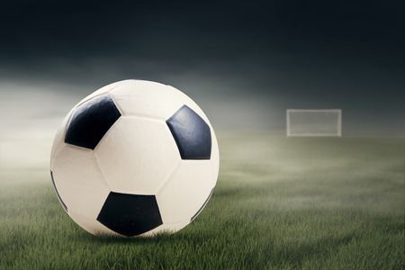 Soccer ball on the green field leads to the gate Stock Photo