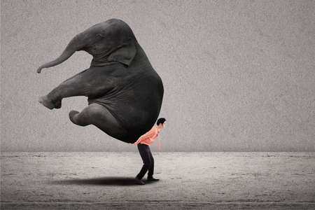 power within: Business leader lifting big elephant on grey background