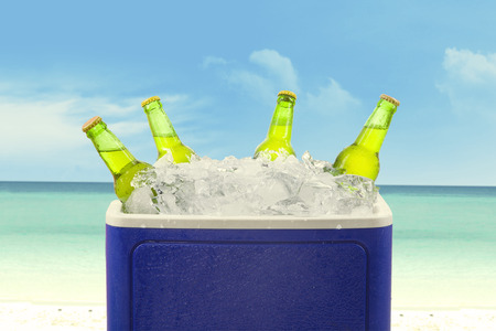 Closeup of an ice chest full of ice and assorted beer bottles.  photo
