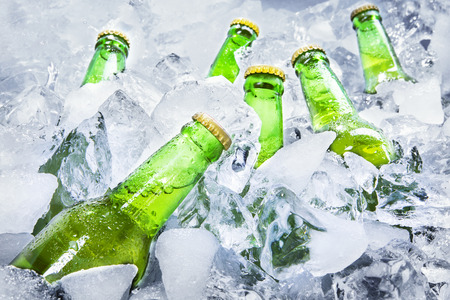 Closeup of green beer bottles getting cool in ice cubes.