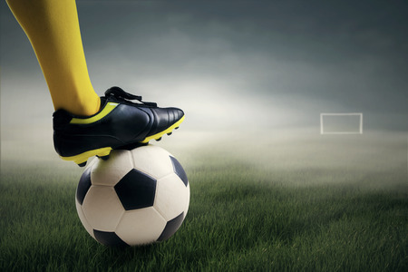 wicket gate: Soccer player ready to kick the ball leads to the gate at field Stock Photo