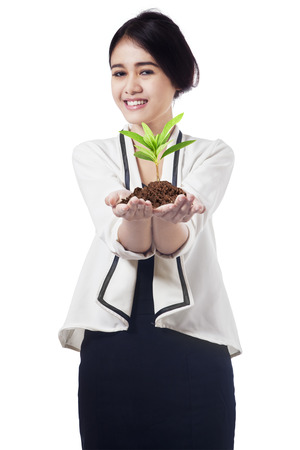 Asian businesswoman holding plant on her palm. isolated on white  photo