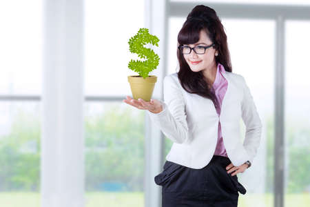 Businesswoman holds investment tree. shoot in office photo