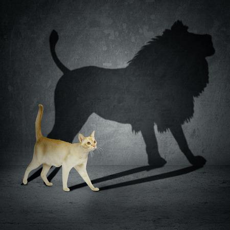 esquizofrenia: Gato con la sombra del le�n en la pared Foto de archivo