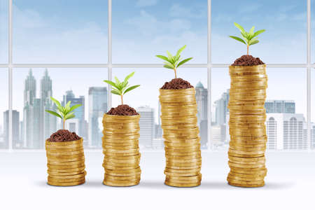 money symbol: Business growth concept with pile of golden coins and plant in office Stock Photo