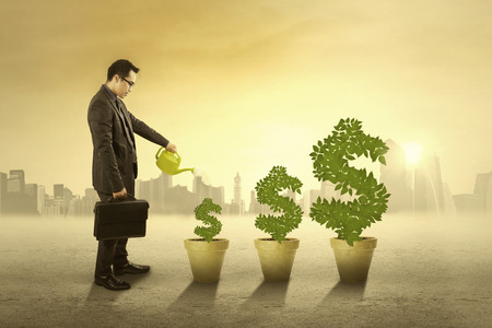 pot money: Successful businessman watering the money tree as his investment in the morning Stock Photo