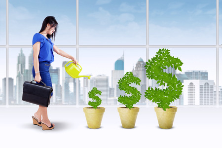 pot of money: Portrait of businesswoman holding briefcase and watering the money tree to keep its growth