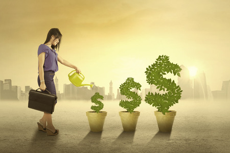 Portrait de femme d'affaires arroser les arbres de l'argent dans la matinée pour maintenir la croissance Banque d'images - 32993137